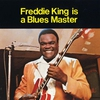 Couverture de l'album Freddie King Is a Blues Master