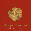 Cover of the album The Dreaming (vol 3)