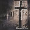 Couverture de l'album Flames of Love