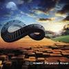 Cover of the album The Perpetual Ritual