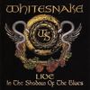 Cover of the album Live in the Shadow of the Blues