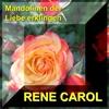 Couverture de l'album Mandolinen der Liebe erklingen