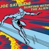 Couverture de l'album Surfing With the Alien