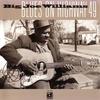 Couverture de l'album Blues on Highway 49