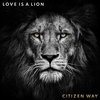 Cover of the album Love Is a Lion