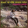 Couverture de l'album East of the River Nile