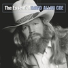 Cover of the album The Essential David Allan Coe