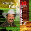 Cover of the album Roberto Pulido: 30 Éxitos Insuperables