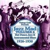 Couverture de l'album Jazz Mad Vol. 2: Hot Dance, Jazz & Instrumental Blues 1926-1930