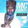 Cover of the album Sekem - Single