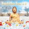 Cover of the album Buddha Bar XV