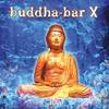 Couverture de l'album Buddha Bar X (Bonus Track Version)