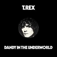 Cover of the track Dandy in the Underworld