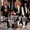 Couverture de l'album The Best of Britny Fox