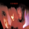 Couverture de l'album Pornography