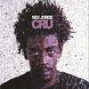 Cover of the album Cru