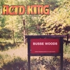 Cover of the album Busse Woods