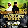 Couverture de l'album Hip Hop Lives