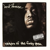 Couverture de l'album Return of the Funky Man