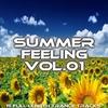Couverture de l'album Summer Feeling Vol.01
