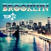 Cover of the album The T.S.O.B. Anthology: The Funk & Disco Sound of Brooklyn