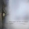 Couverture de l'album The Delicate Forever