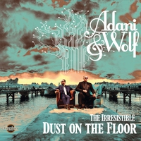 Couverture du titre The Irresistible Dust On The Floor