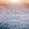 Cover of the album Floating