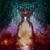 Cover of the album Dasein