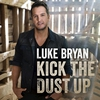 Couverture de l'album Kick the Dust Up - Single