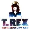 Couverture de l'album 20th Century Boy - Single