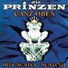 Couverture de l'album Ganz oben: Hits MCMXCI - MCMXCVII