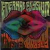 Cover of the album Spiritualized D
