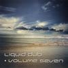 Cover of the album Liquid Dub, Vol. 7