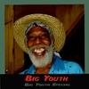Couverture de l'album Big Youth Special