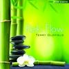Couverture de l'album Reiki Flow