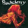 Couverture de l'album Buckcherry