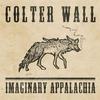 Cover of the album Imaginary Appalachia