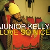 Cover of the album Love So Nice