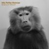 Couverture de l'album Baboon Moon