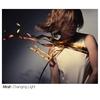 Couverture de l'album Changing Light