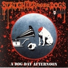 Couverture de l'album A Dog Day Afternoon (Live)