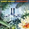 Couverture de l'album Amazonica