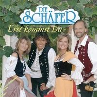 Cover of the track Erst kommst du