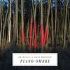 Couverture de l'album Piano ombre (Bonus Track Version)