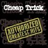 Couverture de l'album Authorized Greatest Hits