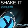Couverture de l'album Shake It (Remixes)