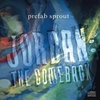 Cover of the album Jordan: The Comeback