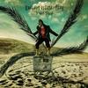 Couverture de l'album Desert Butterflies