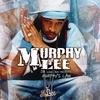Couverture de l'album Murphy's Law
